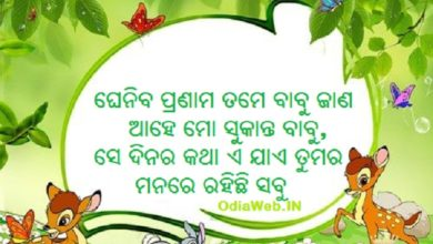 Photo of Odia Shayari For Sukant – Latest in Odia Language