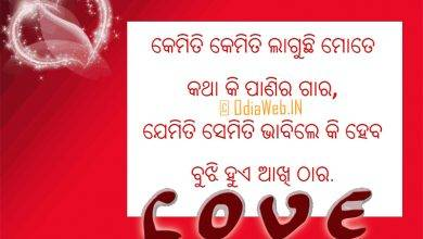 Photo of Oriya language love sms 2015