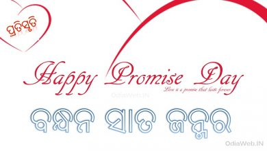 Photo of Odia Promise Day Sms – Oriya Sms For Promise Day