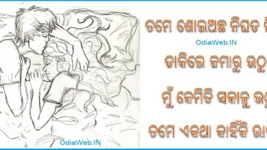 Photo of Odia Love Shayari