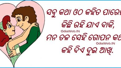 Photo of Oriya Shayari Love Sms Collection
