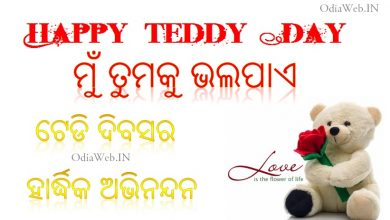 Photo of Odia Teddy Day Sms – Oriya Sms For Teddy Day