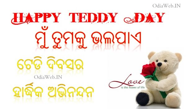 teddy Day oriya sms shayari wallpaper