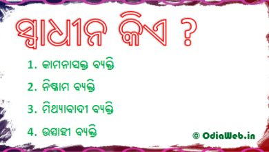 Photo of Oriya Facebook Puzzle Comment Photo – Question 2