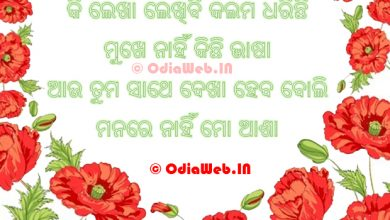 Photo of Oriya Love Shayari Image For Facebook and WhatsApp