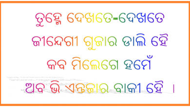 Photo of Odia Shayari : Hindi Shayri in Odia Language