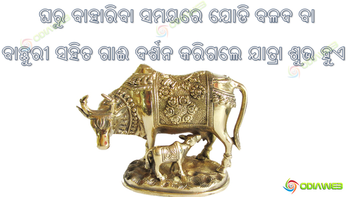 Odia-Tips-For-Lihe-Why-To-Pray