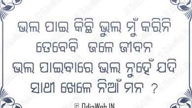 Photo of Odia Sms and Odia Dhoka Sms Bhala Pai Bhul Karini