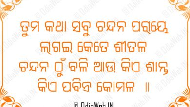 Photo of Nuakhai Special Odia Love Shayari Sms 2015