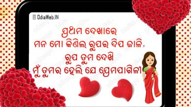 Photo of Oriya Shayari Of Love Sms – Download and Send To Your Friend