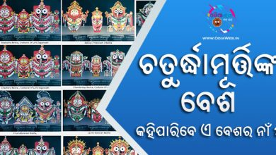 Love Jagannath Besha