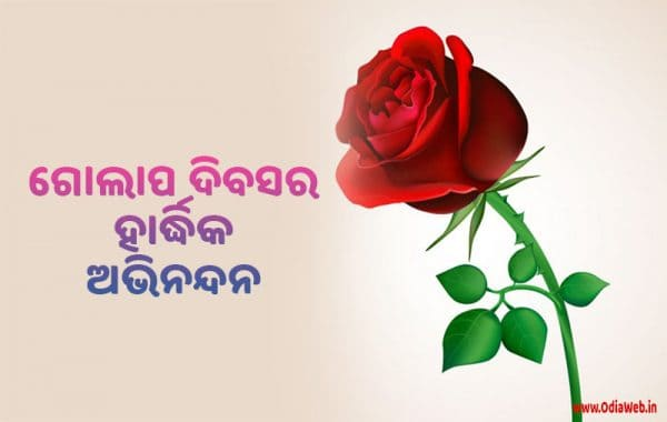 Rose Day Wishes in Odia