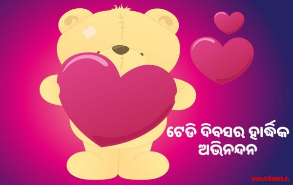 Teddy Day Wishes in Odia