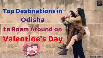 Photo of Top Destinations in Odisha to Roam Around on Valentine's Day