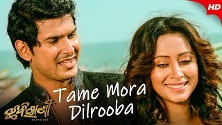 Photo of Odia Video Song Tame Mora Dilrooba by Human Sagar & Dipti Rekha Padhi.