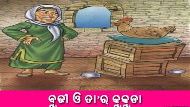 Photo of New Odia Short Story Budhi o Tara Kukuda