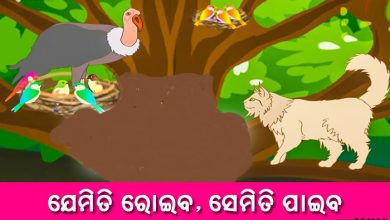 Photo of New Odia Short Story Jemiti Roiba Semiti Paiba
