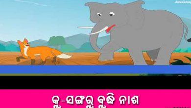 Photo of New Odia Short Story Ku Sangaru Budhi Nasha