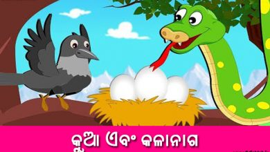Photo of New Odia Short Story Kua or Kalanaga