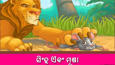 Photo of New Odia Short Story Sinha o Musha.