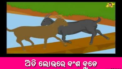 Photo of New Odia Short Story Ati Lobhare Bansha Bude