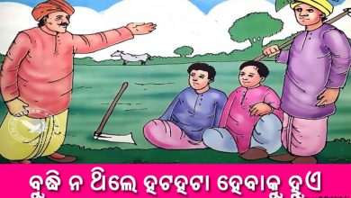 Photo of New Odia Short Story Budhi Na Thile Hatahata Hebaku Hue