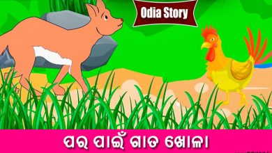 Photo of New Odia Short Story Para Pain Gata Khola
