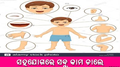 Photo of New Odia Short Story Sahajogare Sabu Kama Chale