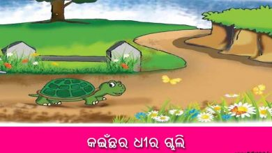 Photo of New Odia Short Story Kainchara Dhira Chali