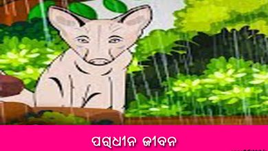 Photo of New Odia Short Story Paradhina Jibana