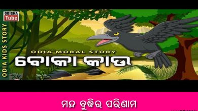 Odia Short Story manda buddhira parinama