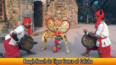 Baagh Naach Or Tiger Dance of Odisha