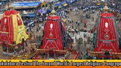 Nabakalebara Festival The Second World's Largest Religious Congregation