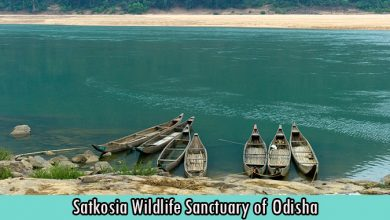 Satkosia Wildlife Sanctuary of Odisha