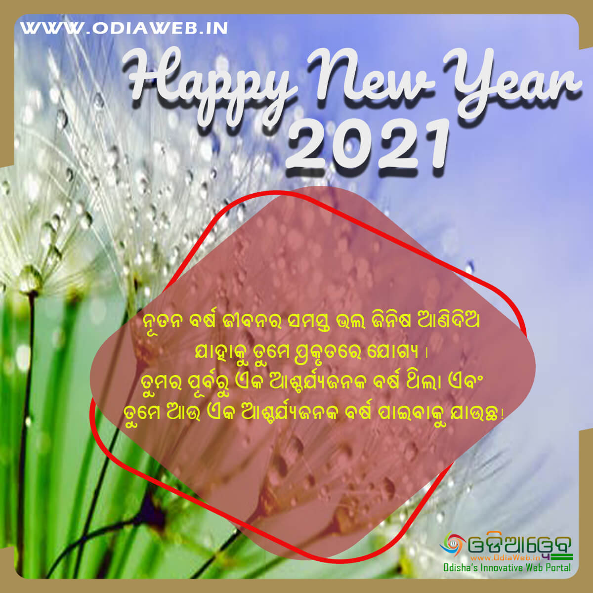 Happy New Year 2021 Wishes Odia (10)