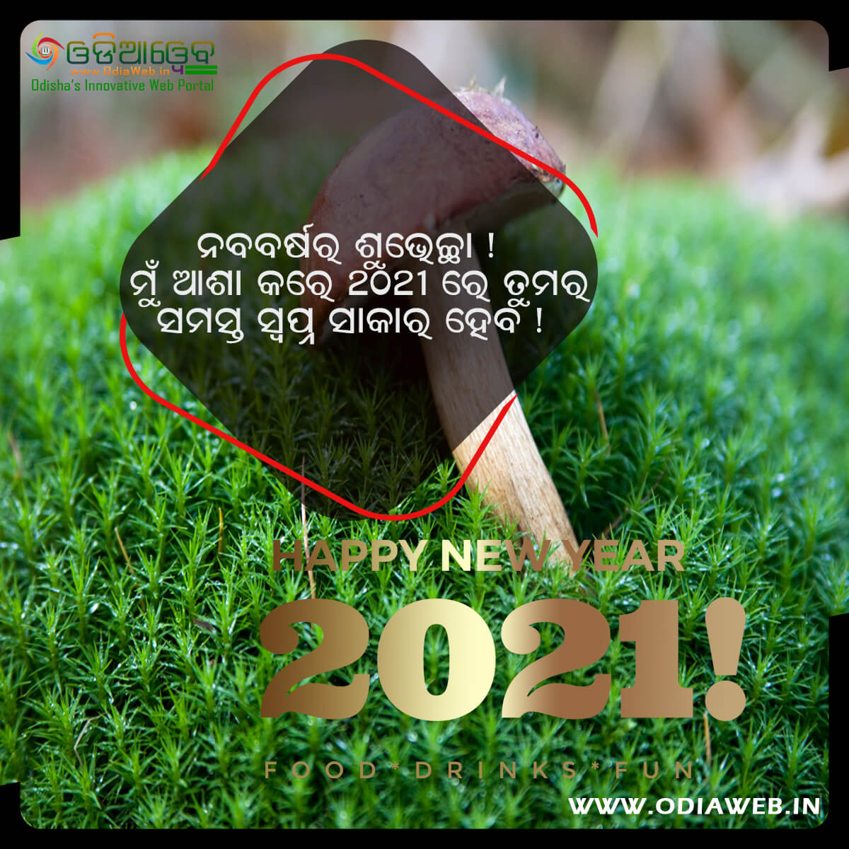 Happy New Year 2021 Wishes Odia (5)