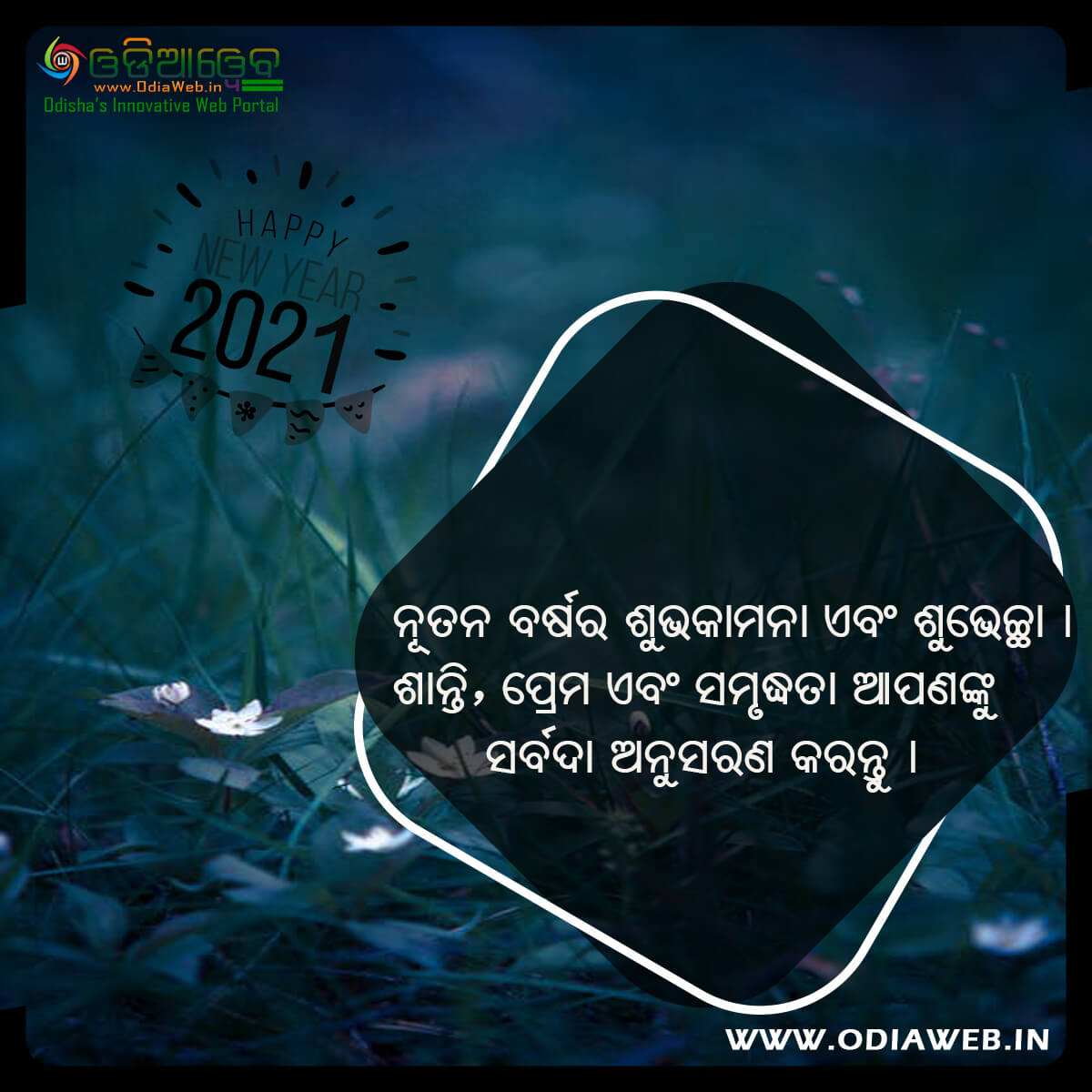 Happy New Year 2021 Wishes Odia (7)