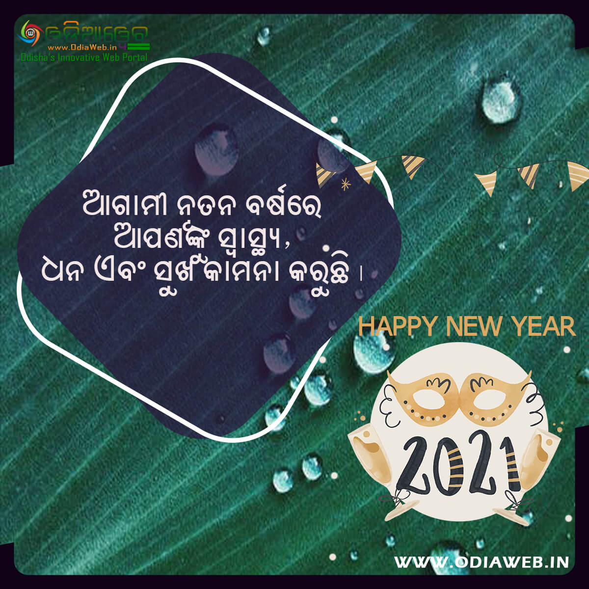 Happy New Year 2021 Wishes Odia (9)