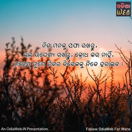Odia Anger Quotes3