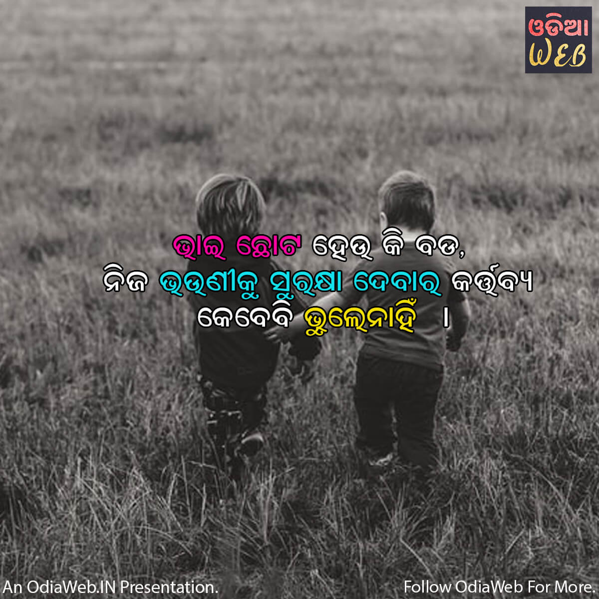 Odia Brother & Sister Quotes1