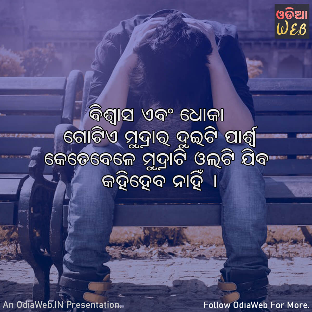 Odia Dhoka Quotes1