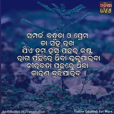 Odia Relationship Quotes 4