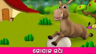 Odia Short Story Gopala Gadha